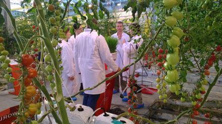 Essentials, introduction, greenhouse management