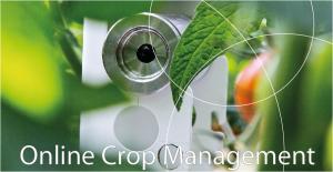 Image_IDC_Online_Crop_Management